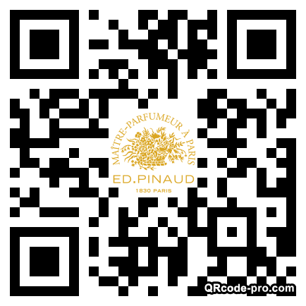 QR code with logo 1H6q0