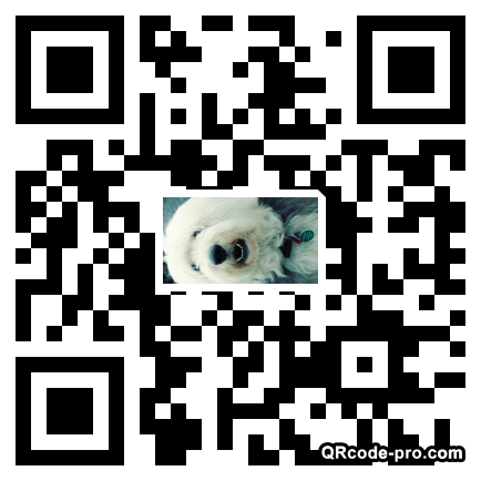 QR code with logo 20vr0