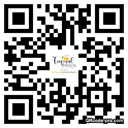 QR code with logo 2roh0
