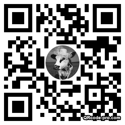 QR code with logo 33480