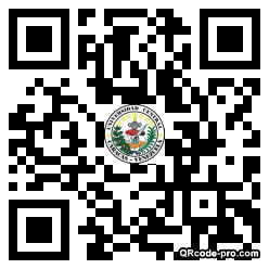 QR code with logo Z7S0