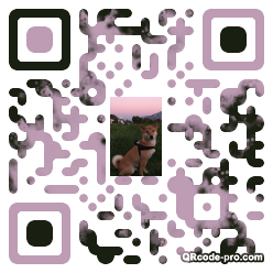 QR code with logo pKA0