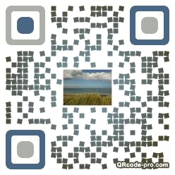 QR code with logo qBs0